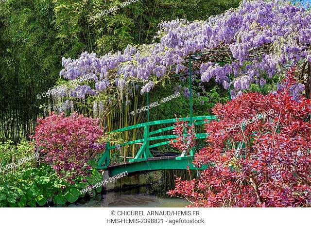 France, Eure, Giverny, Claude Monet foundation, the japonese garden with wisteria