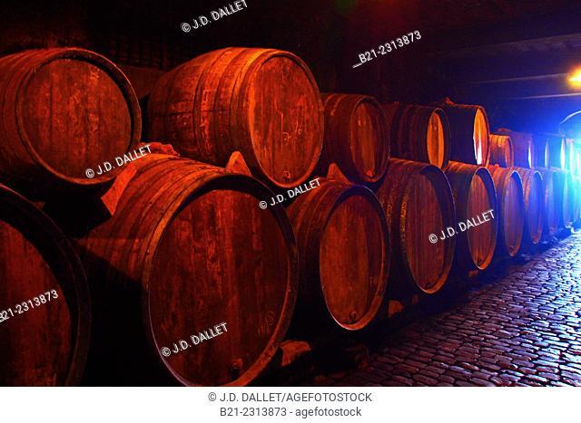 Wine cellar at  Bodegas Monje,  El Sauzal. Tenerife, Canary Islands, Spain