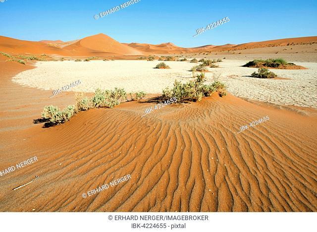 Sand dunes in Namib Desert, Namib-Naukluft National Park, Sossusvlei, Namibia