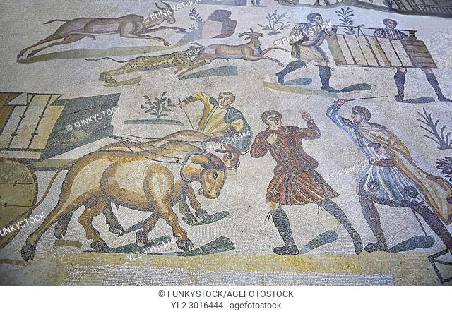 Ox man being diciplined from the Ambulatory of The Great Hunt, room no 28, at the Villa Romana del Casale, first quarter of the 4th century AD