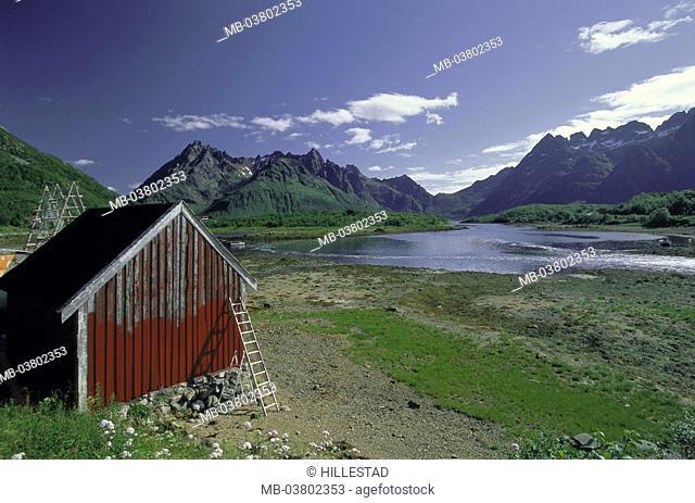 Norway, Fylke North country, Lofoten, Island Austvagöy, Austnesfjorden, Fjord landscape, cottage, summer Europe, Northern Europe, Scandinavia, Nordnorwegen