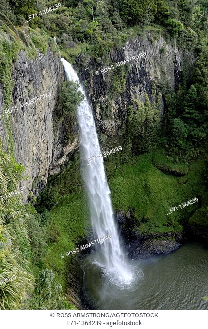 Bridal Veil Falls Maori Waireinga is a plunge waterfall located along the Pakoka River in the Waikato area of New Zealand  The waterfall is 55 metres high