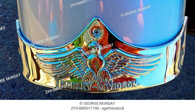 Harley Davidson Logo,