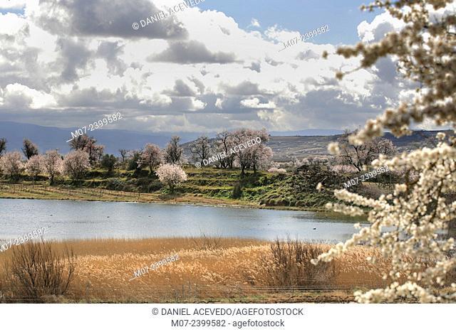 San Asensio natural lake, Rioja wine region, Spain, Europe