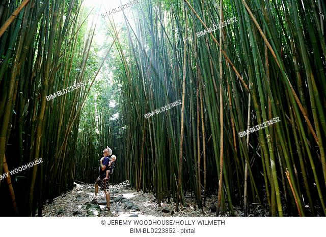 Father carrying baby son looking up at tall bamboo