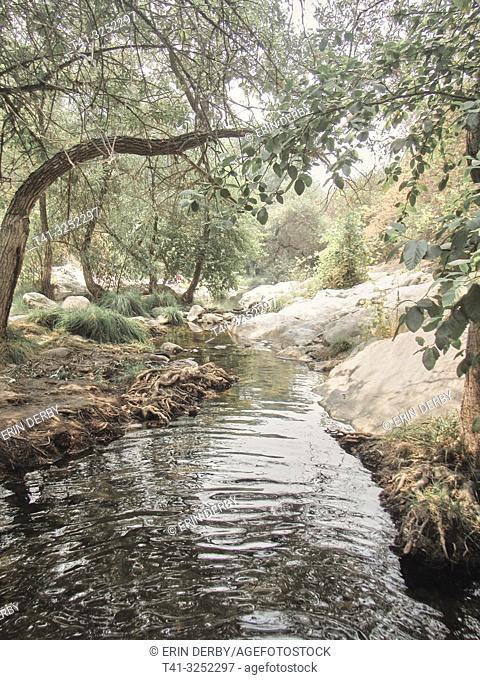 Landscape photograph of a river in California