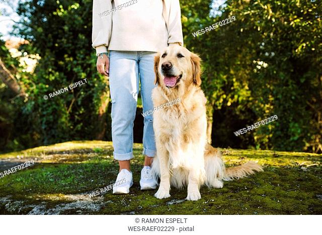 Woman next to Golden retriever dog sitting on a meadow