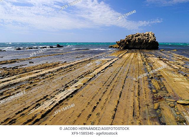 Flysch on the coast of Tarifa, El Estrecho Natural Park, Cádiz province, Andalusia, Spain