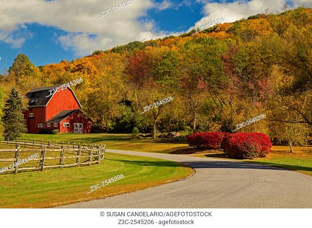 Red Barn Around Fall Foliage - The warm and bright colors of the Autumn season in the North East surround the red barn at a farmhouse in Western Connecticut