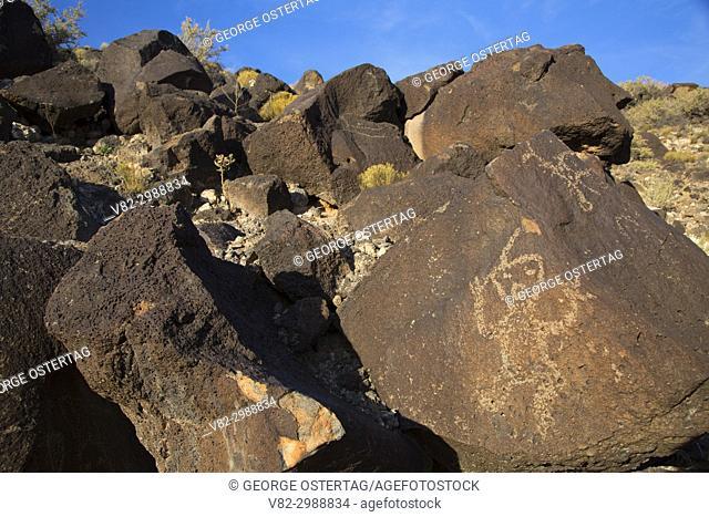 Petroglyph, Piedras Marcadas Canyon Unit, Petroglyph National Monument, New Mexico