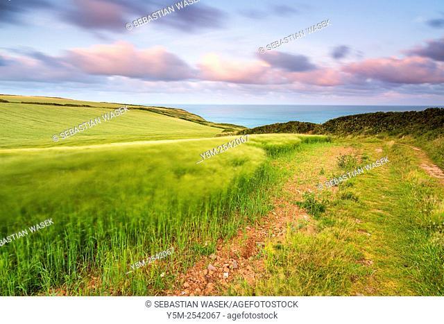 Hartland Point, North Devon, England, United Kingdom, Europe