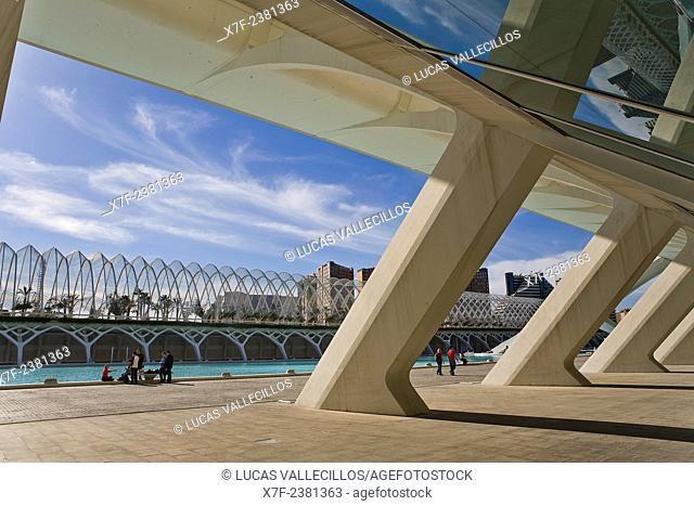 Umbracle from Príncipe Felipe Sciences Museum,City of Arts and Sciences, by S. Calatrava. Valencia. Spain