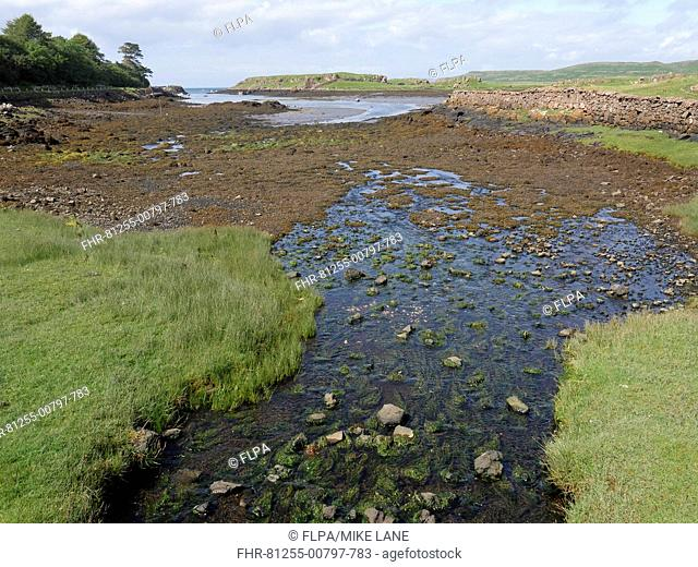 View of estuary and coastline, Croig Estuary, Isle of Mull, Inner Hebrides, Scotland, July