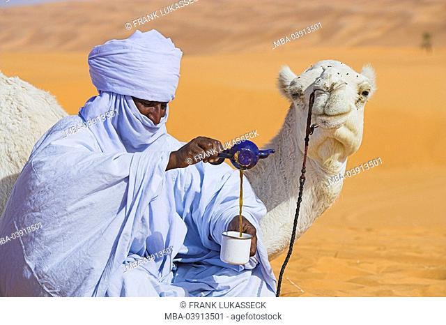 Africa, Libya, sand-desert, Tuareg, camel, tea-rite