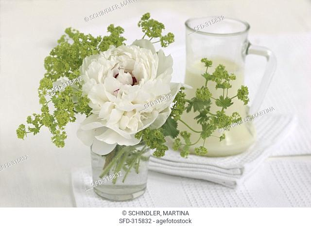 Peony and lady's mantle in a glass
