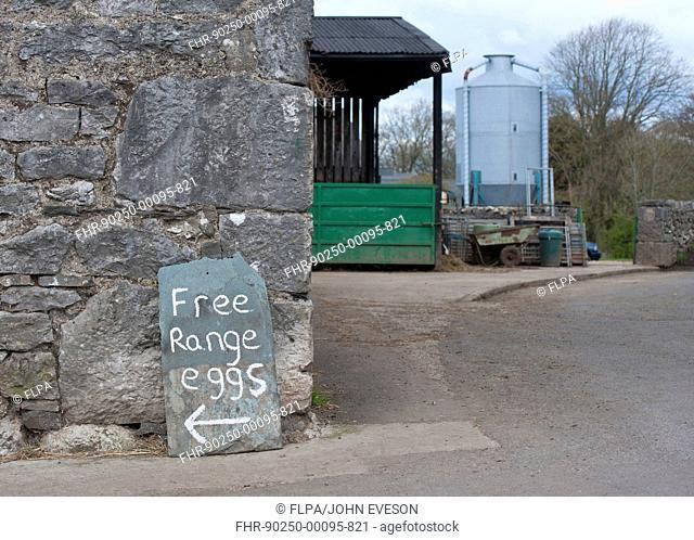 'Free Range Eggs' sign in farmyard, Gibralta Farm, Silverdale, Lancashire, England, april