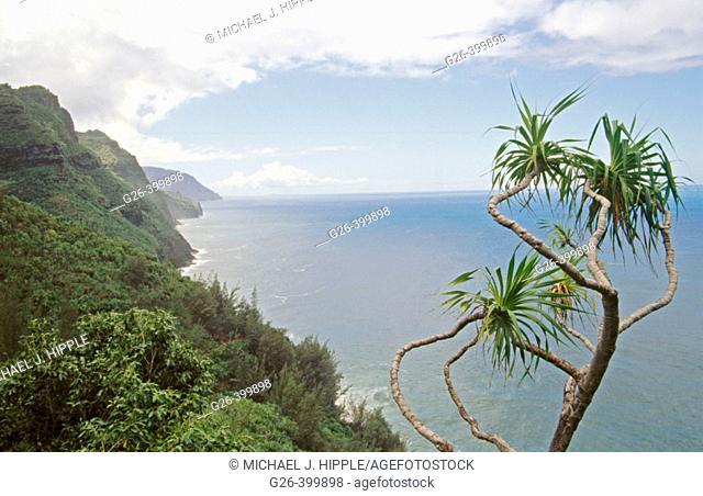 Na Pali Trail. Kauai. Hawaii. USA