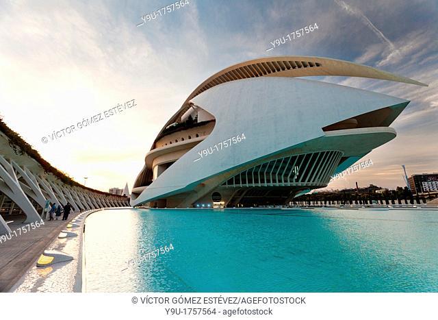Palace of Arts, Valencia, Spain
