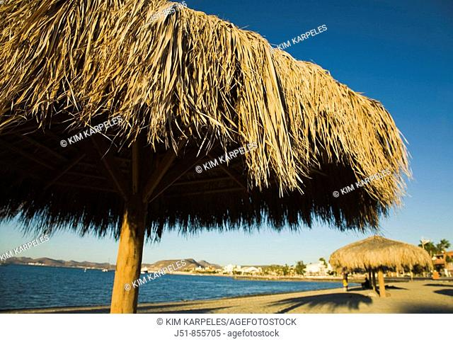 MEXICO La Paz Palapa thatched umbrellas on beach along bay