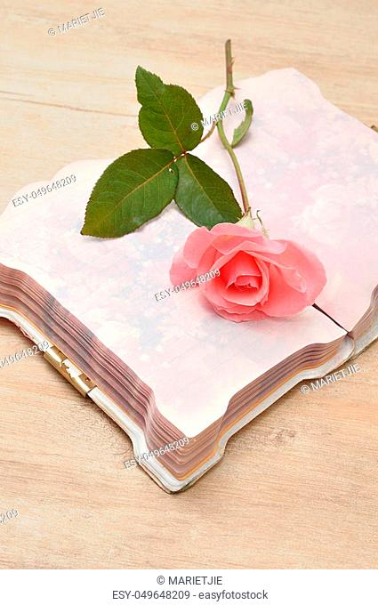 A single pink rose in an open notebook