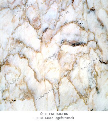 White Marble With Brown Veins