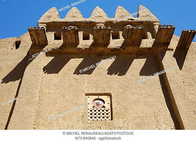 Typical gabled architecture, Djenne, Mali