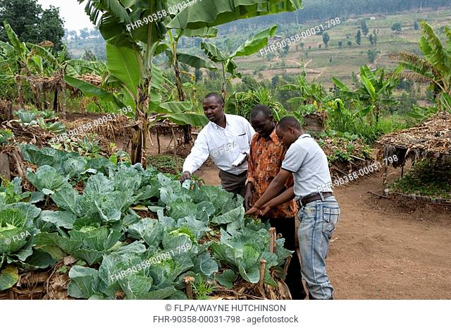 Farmer and local advisors standing at keyhole garden, with compost pile in middle to allow good vegetable growth, Rwanda