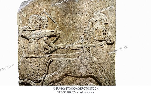 Hittite relief sculpted orthostat stone panel of Long Wall Limestone, Karkamıs, (Kargamıs), Carchemish (Karkemish), 900 - 700 B. C