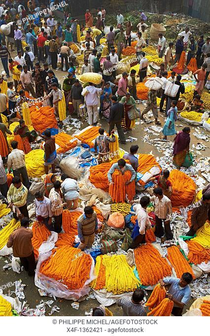 India, West Bengal, Kolkata, Calcutta, Mullik Ghat flower market