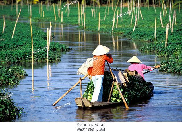 Two women in boat at Mekong Delta. Vietnam