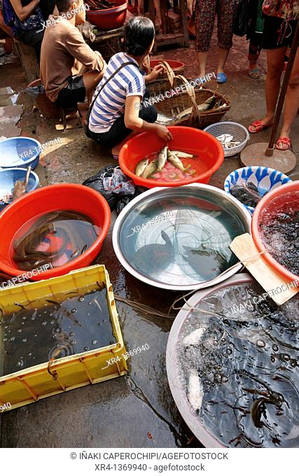 Fish market, Market Rongjiang, Rongjiang, Guizhou, China