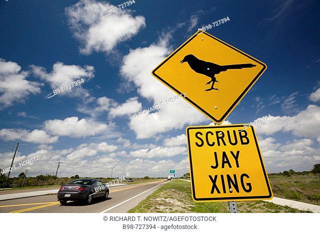 Road sign on highway, Sarasota County, Florida. Scrub Jay Xing