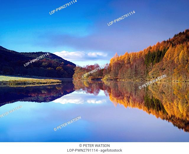 Scotland, Perthshire, Rannoch Moor. Trees and surrounding hillside reflected in the still waters of Loch Tummel on a winter morning