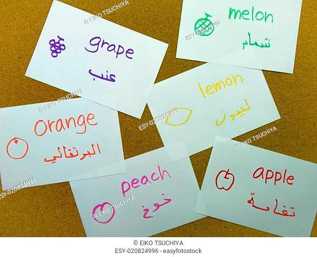 Language Flash Cards Arabic