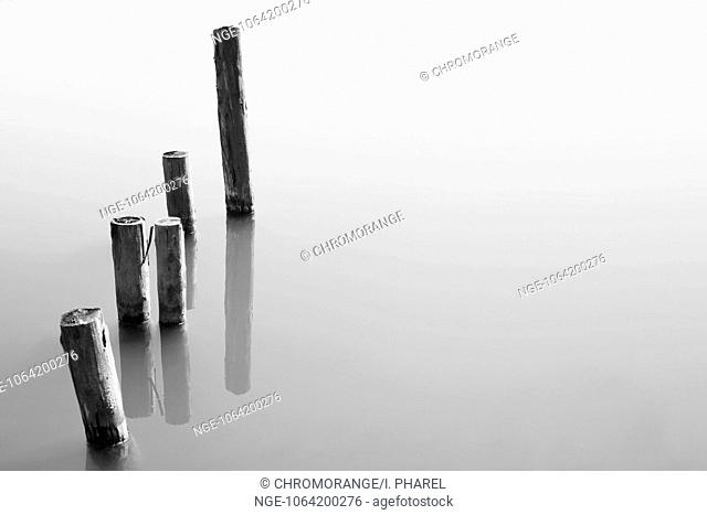 Wooden posts in the water, black and white