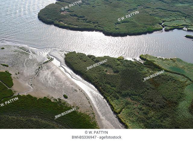 aerial view to river mouth, Netherlands, Zeeuws-Vlaanderen, Verdronken land van Saeftinghe