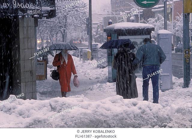J.Kobalenko, Snowstrom at Dusk with Cars, Toronto, ON