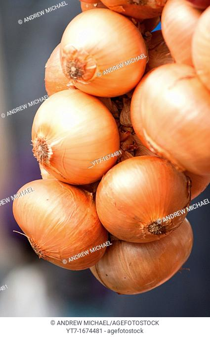 A string of French onions close up
