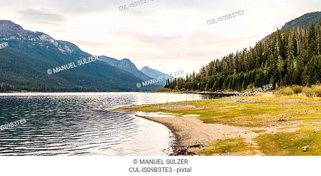 Forest, lake and mountain landscape, Strathcona-Westmin Provincial Park, Vancouver Island, British Columbia, Canada