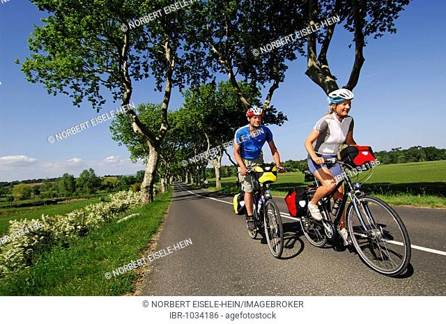 Cyclists, Canal du Midi, Midi, France, Europe
