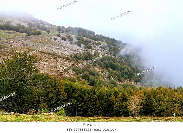 Countryside of Sierra de Aralar in Navarra, Spain