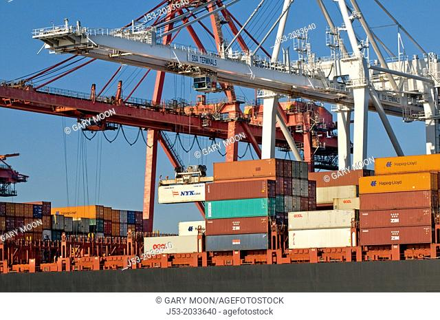Container cranes transferrng cargo from container ship at Port of Seattle, Seattle Washington USA