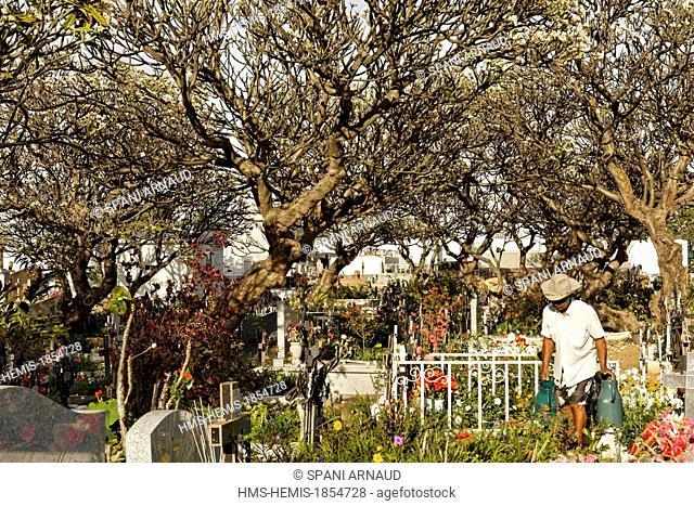 France, Ile de la Reunion (French overseas department), Pointe au Sel, Saint Leu, authentic Creole cemetery maintained amid magnolias