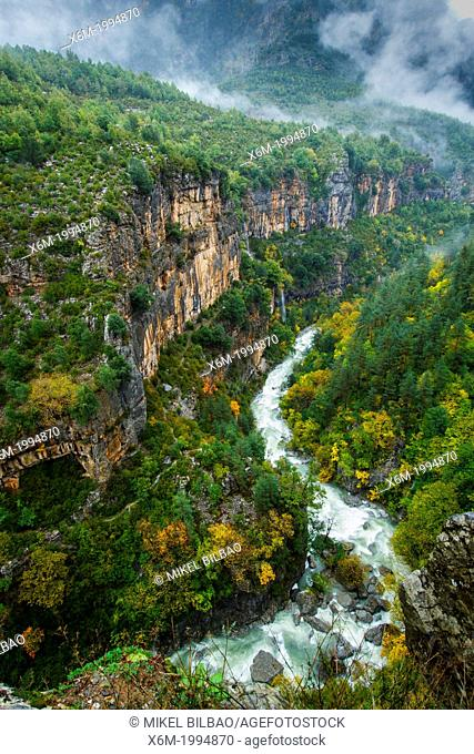 Bellos river and deciduous forest in autumn. Añisclo Canyon. Huesca, Aragon, Spain, Europe