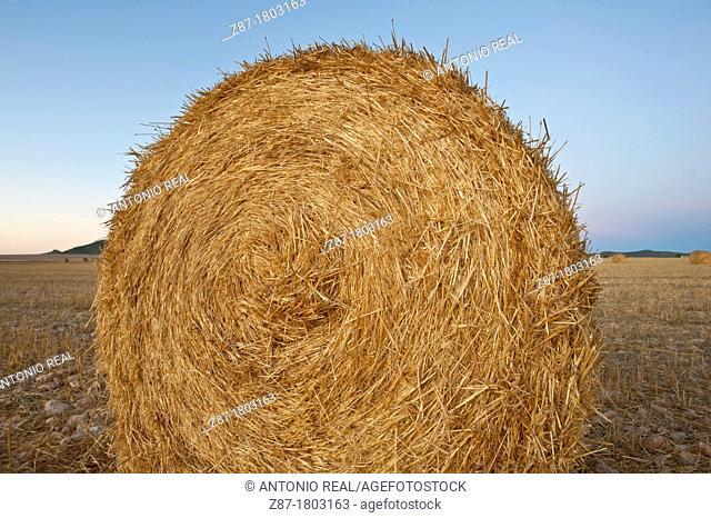 Straw Bales Almansa Albacete