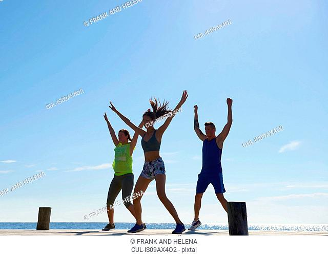 Friends on pier wearing exercise clothes arms raised exercising