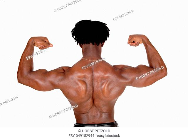 A young African American man standing from the back, lofting his arms.flexing his biceps, with curly hair, isolated for white background