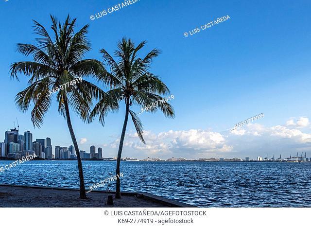 Morning at Biscayne Bay. Miami. Florida. USA