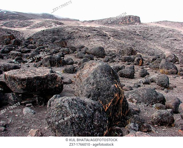 Volcanic field, Shira Plateau, Machame Route, Mt  Kilimanjaro, Kilimanjaro National Park, Tanzania