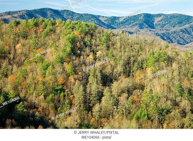 Autumn, Cataloochee Cove, Great Smoky Mtns NP, North Carolina